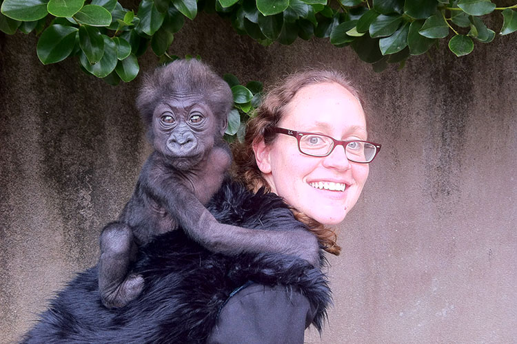 Eva Soni and the baby gorilla