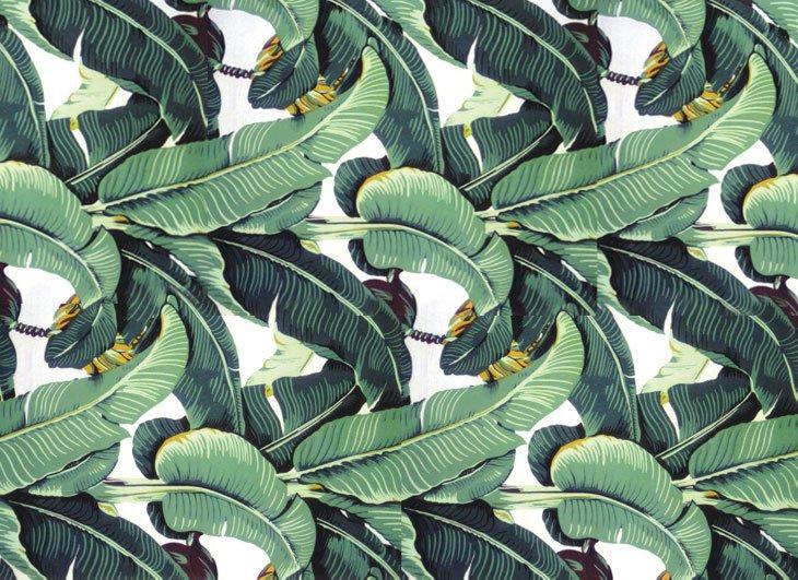 martinique-wallpaper-palm1