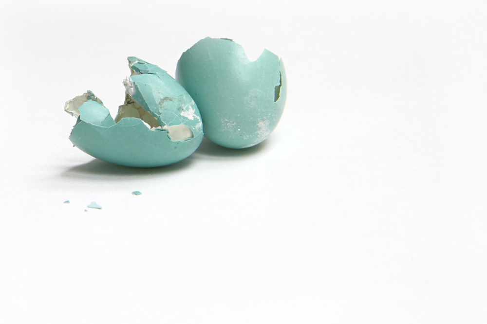robin's blue egg - Mary Jo Huffman