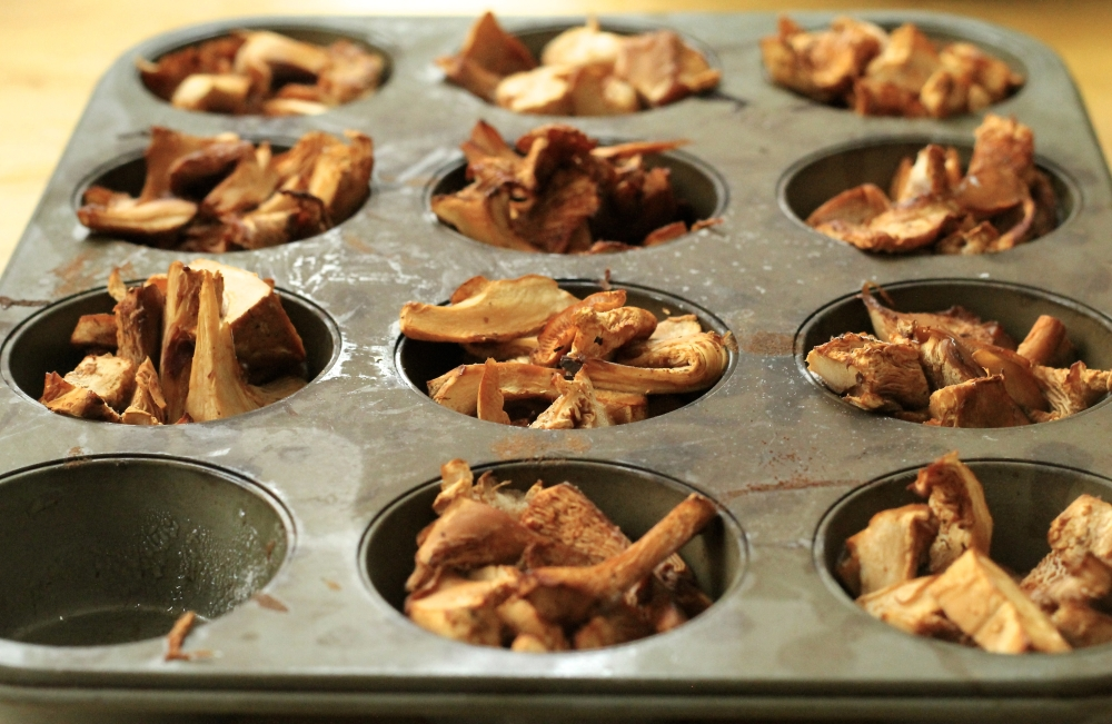 chanterelles frozen in a muffin pan